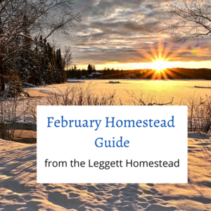 February Homestead Guide