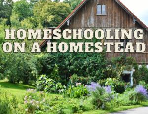 homeschooling on a homestead